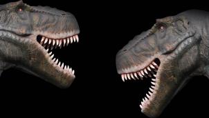 Tlatolophus galorum - Loài khủng long chưa được ghi nhận trong bất kỳ cuộc khảo cổ nào