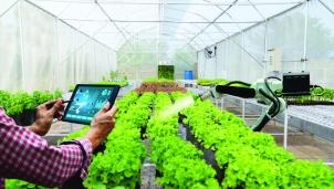 Chuyển đổi số nông nghiệp tạo đột phá từ sản xuất đến tiêu thụ sản phẩm
