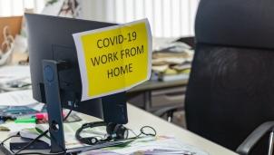 Doanh thu của các công ty công nghệ nằm ngoài tác động của dịch COVID-19