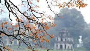 Dự báo thời tiết Hà Nội ngày mai 12/2: Sáng sương mù dày đặc đến trưa trời hửng nắng