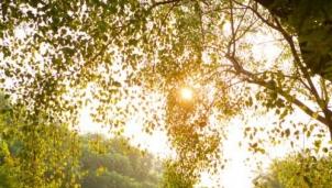 Dự báo thời tiết Hà Nội ngày mai 21/11: Ngày có nắng nhẹ, rét về đêm và sáng với nhiệt độ 17 độ C