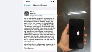 iOS 14 cập nhật trên thiết bị phát sinh lỗi khiến người dùng phát điên