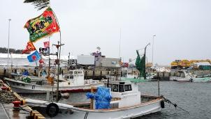 Nhật Bản: AI rút ngắn 10 năm kinh nghiệm đi biển của ngư dân
