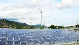 Quy hoạch điện VIII đặt tỉ lệ đóng góp của năng lượng tái tạo bao nhiêu là phù hợp?