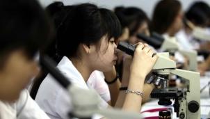 20 trường, viện có thành tích nghiên cứu khoa học tốt nhất của Việt Nam theo SCImogo