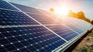 Cao su Phước Hoà muốn kinh doanh điện mặt trời