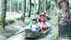 Cù lao Tân Lộc – Cần Thơ thu hút khách du lịch