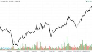 Fecon muốn bán 1.5 triệu cp quỹ, cổ phiếu tăng giá kịch trần