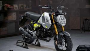 Honda MSX 125 Grom 2021 mẫu xe côn tay phiên bản đường đua