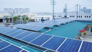 Điện mặt trời phát triển ồ ạt, Thủ tướng yêu cầu rà soát lại