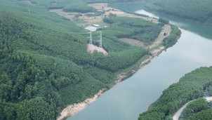 Nhiều dự án truyền tải điện chậm tiến độ vì vướng thủ tục chuyển đổi đất rừng