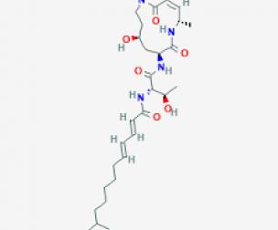 """Phát hiện chất Cepafungin I mới làm """"nổ tung"""" tế bào ung thư"""
