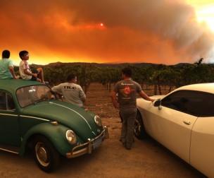 Hương vị nho California bị ảnh hưởng nặng nề bởi cháy rừng