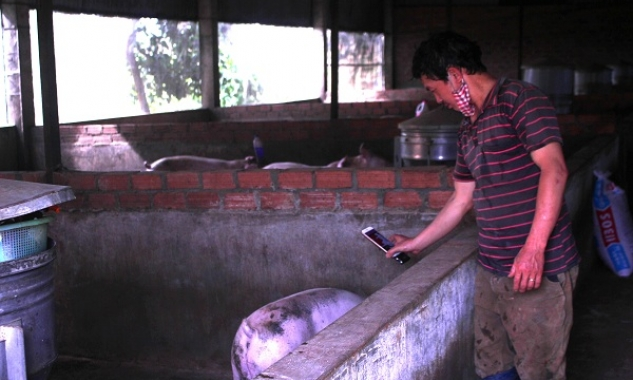 Xác định thân nhiệt cho lợn dưới 3 giây bằng công nghệ trí tuệ nhân tạo