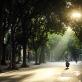 Dự báo thời tiết Hà Nội ngày 30/10: Ngày nắng hanh, trời rét về đêm và sáng