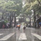 Dự báo thời tiết Hà Nội ngày mai 17/3: Mưa dông diện rộng kèm theo thời tiết cực đoan