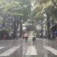 Dự báo thời tiết Hà Nội ngày mai 5/10: Tiếp tục mưa vừa và mưa to
