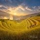 Mù Cang Chải - Viên ngọc nằm sâu trong thung lũng bên bờ Sông Hồng