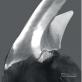Khoáng chất hiếm santabarbaraite bất ngờ được tìm thấy trên sinh vật sống có hàm răng kim loại siêu cứng