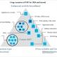 Các ứng dụng tiềm năng của 5G: Quan điểm và nhận thức của các bên liên quan tại Việt Nam