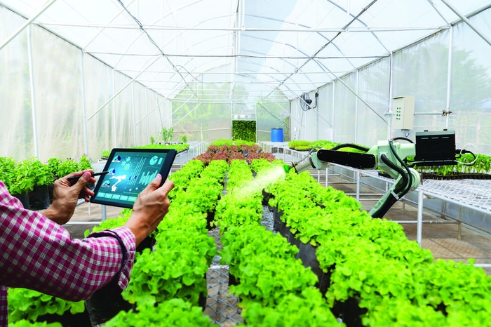 Nông nghiệp thông minh và chuyển đổi số nông nghiệp - Ảnh 1.