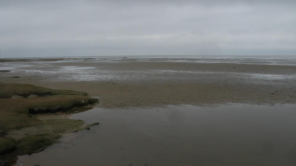 Một góc trong khi vực biển Wadden