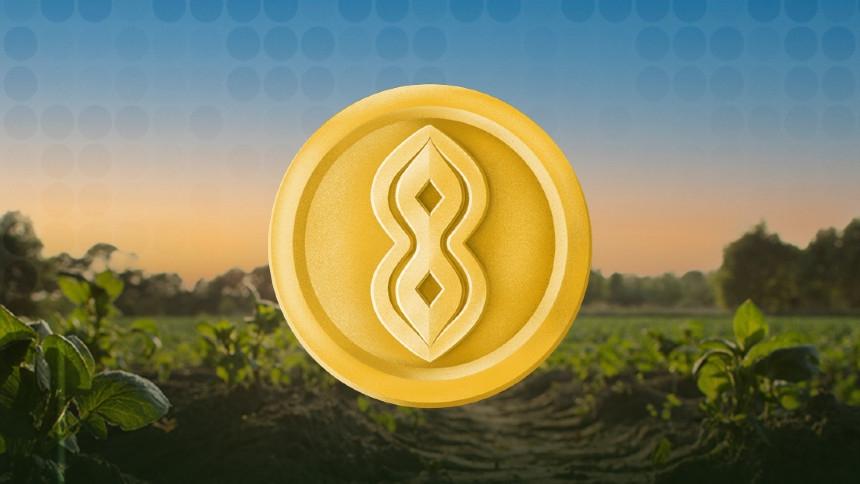 Soya được trợ lực bởi đỗ tương được xem như điển hình cho xu thế nông nghiệp làm trợ lực chính cho tiền điện tử tại Argentina
