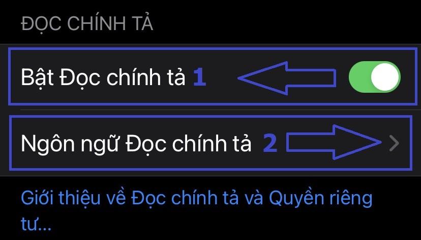 Bật Đọc chính tả trên iPhone