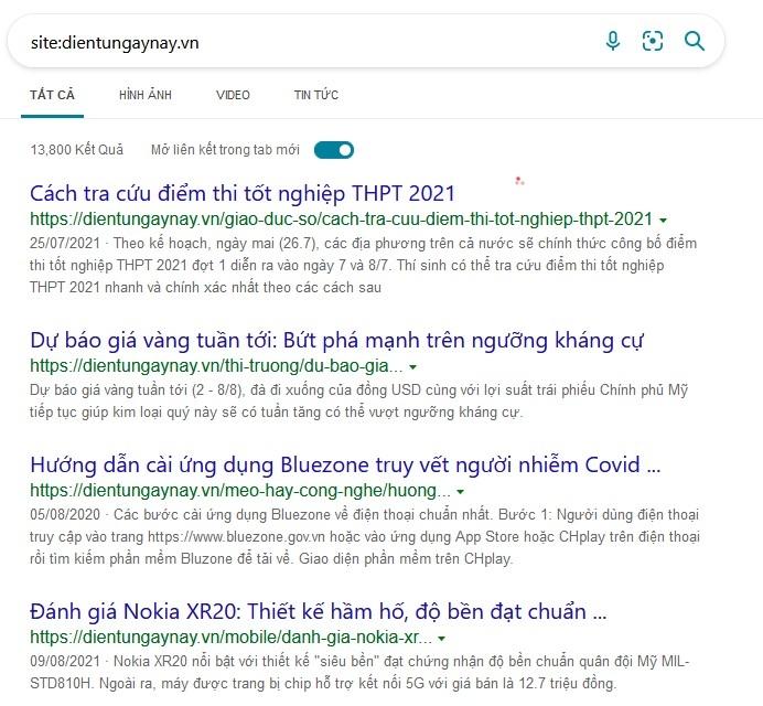 Tìm kiếm chỉ mục trên Google Search