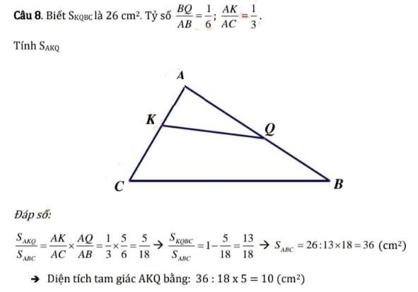 Đáp án Môn toán Trường Cầu Giấy
