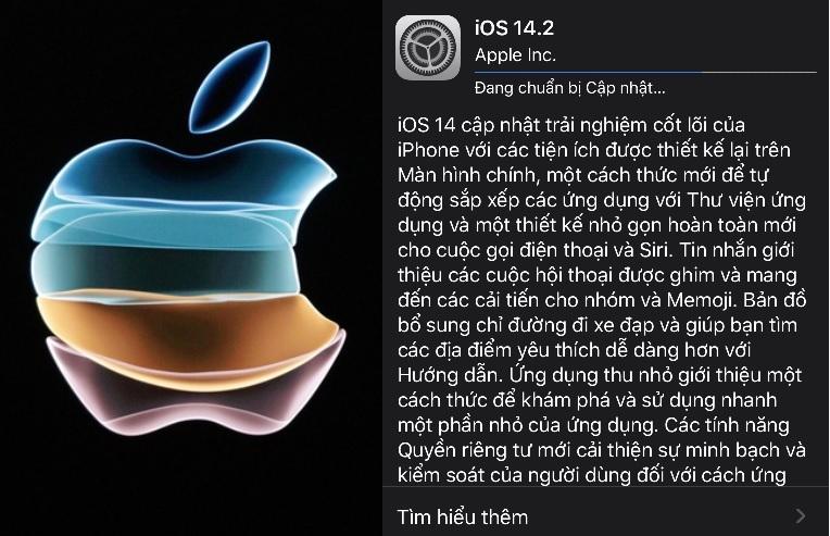 Update iOS 14.2